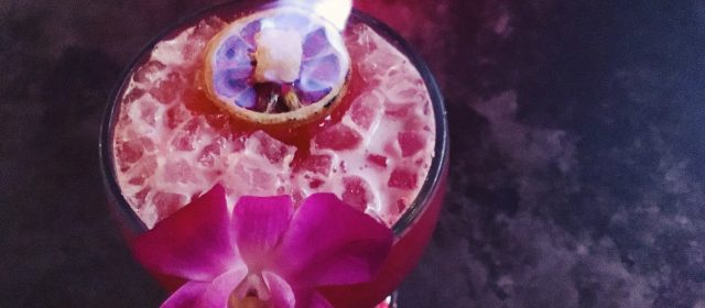 Where You Should Be Drinking in Orlando: Aku Aku Tiki Bar + Tiger Fucker Cocktail Recipe